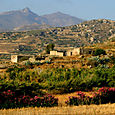 Naxos valley