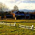Dalarna farm